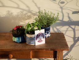 foto de três cachepôs de tecido com plantas comestíveis e cartão sobre mesa de madeira